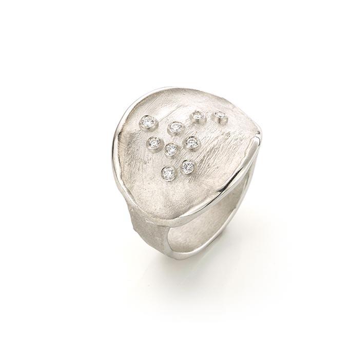 N ° 256 set zilveren ring