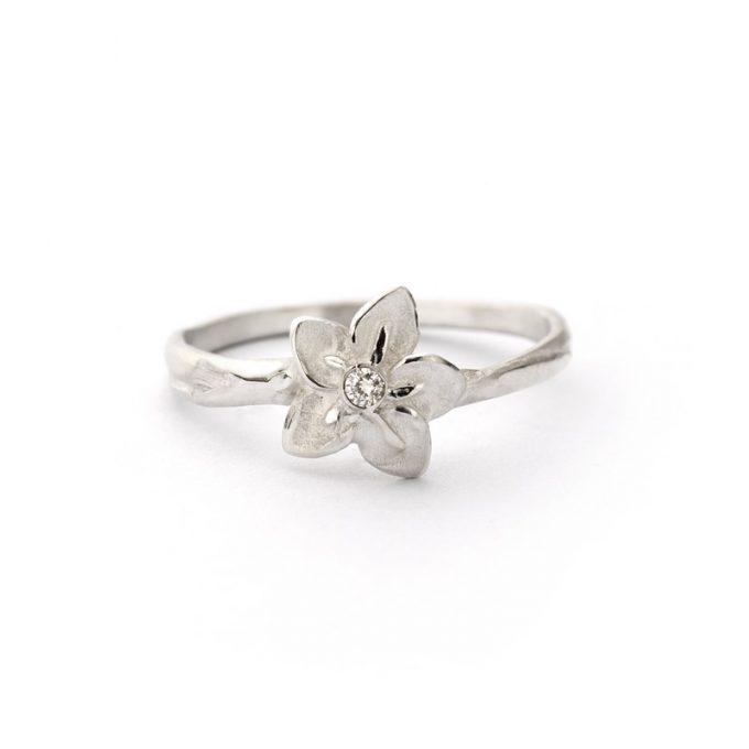 Silver ring N° 001 SET